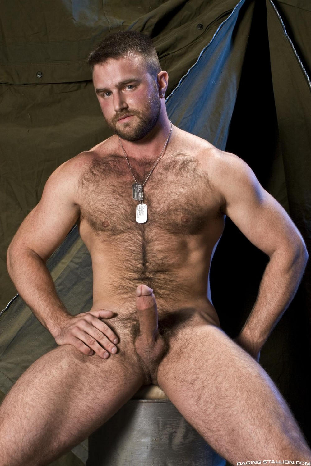 Visit Raging Stallion