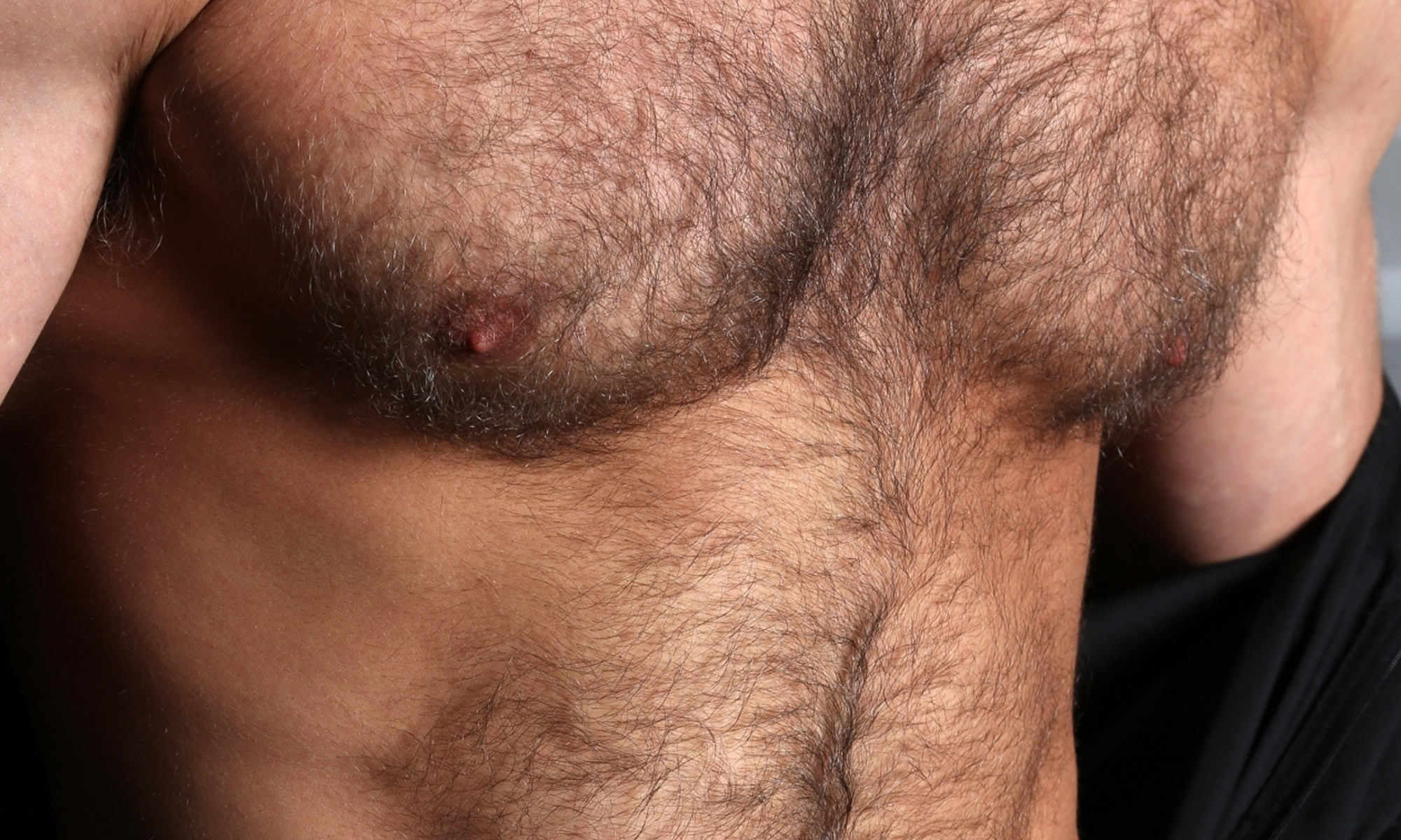 The HAIRY CHEST Domain